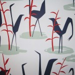 Blue Ibis Birds Wallpaper