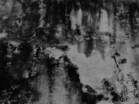 Vespertine 2 Mural