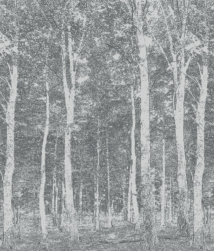 mural bosque