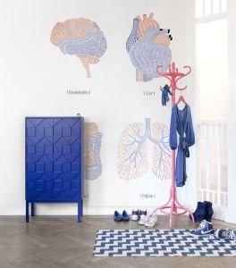 Mural Anatomía