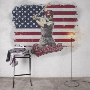 Mural Béisbol Gris