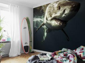 Mural Tiburón