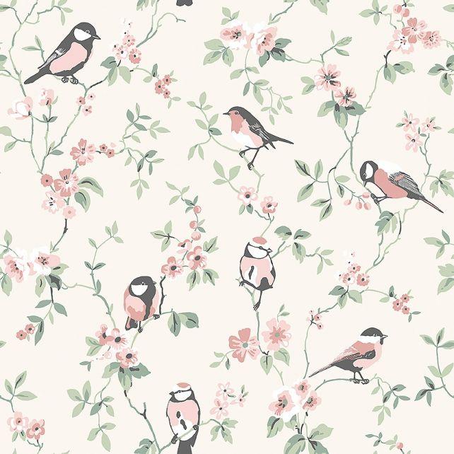 Falsterbo Birds 7682 wallpaper