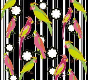 Funny Parrots colour