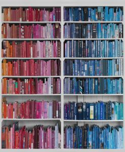 Mural Librería Azul y Roja
