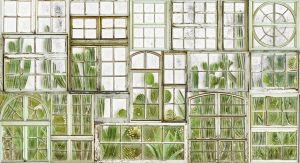 Mural Window Flora