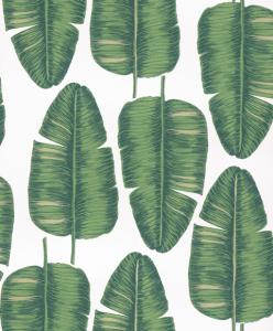 Papel Pintado Palmis Greenery Kwa704