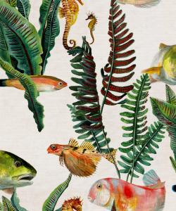 Papel pintado Bank of Fish Swan