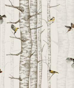 Papel pintado Birch Trees Beige
