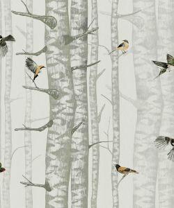 Papel pintado Birch Trees Silvester