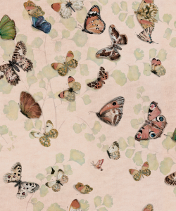 Papel pintado Magic Butterflies Sweet