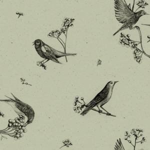 Papel pintado Sweet Birds Matcha