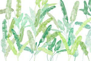 mural hojas palmera primavera verde