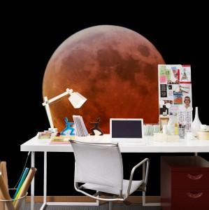 Lunar Eclipse Mural