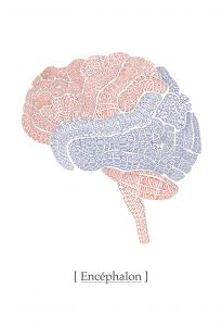Brain Mural