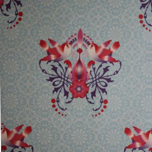 wallpaper,Catalina,estrada,bird,skyflower