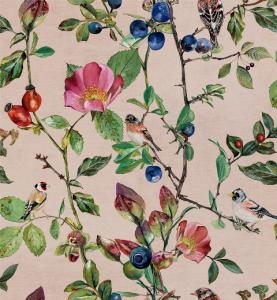 Goldfinch Song Blush wallpaper