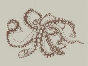 Mural Octopus X-Ray Papirus