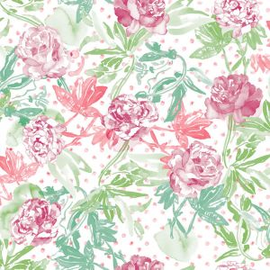 wallpaper roses fresh green rose