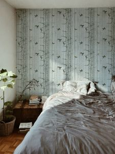 Birch Trees Silvester wallpaper