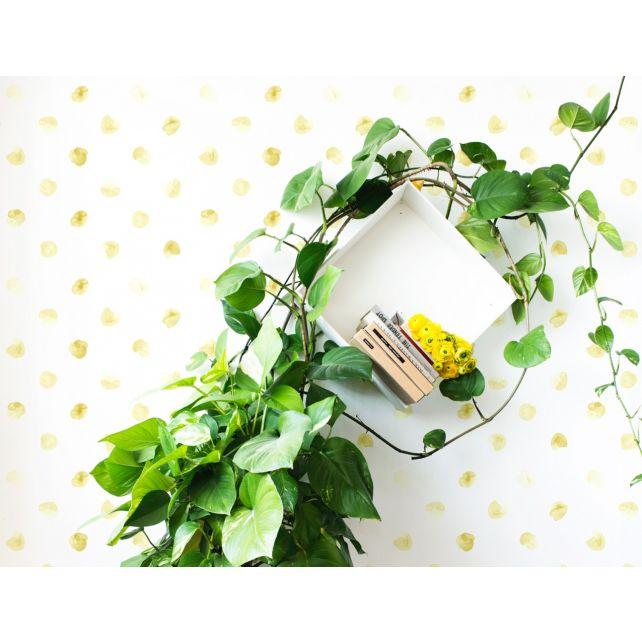 wallpaper petal green