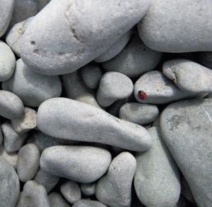 Pebbles Mural