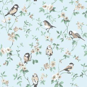 Falsterbo Birds 7681 wallpaper