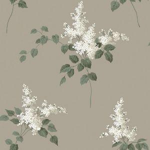 Lilacs 7667 wallpaper