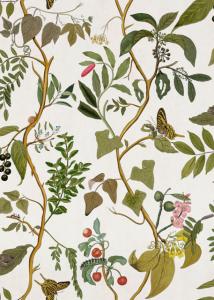 Diderot Swan wallpaper