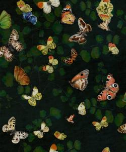 Magic Butterflies Night wallpaper