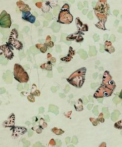 Magic Butterflies Maca wallpaper