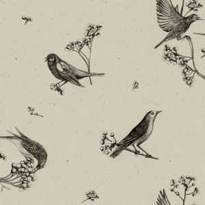 Sweet Birds Black wallpaper