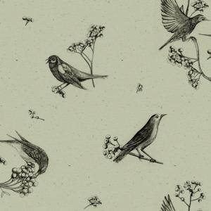 Sweet Birds Matcha wallpaper